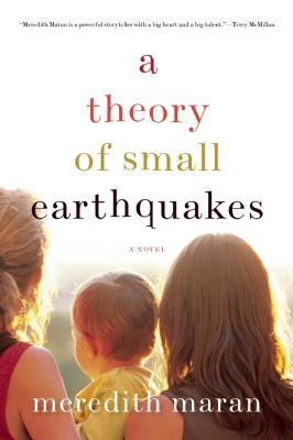 A Theory of Small Earthquakes By Maran, Meredith